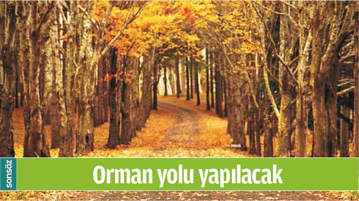 ORMAN YOLU YAPILACAK