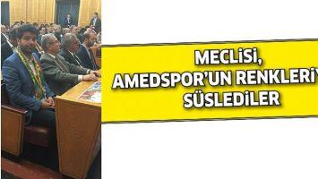 MECLİSİ, AMEDSPOR'UN RENKLERİYLE SÜSLEDİLER