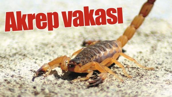 AKREP VAKASI