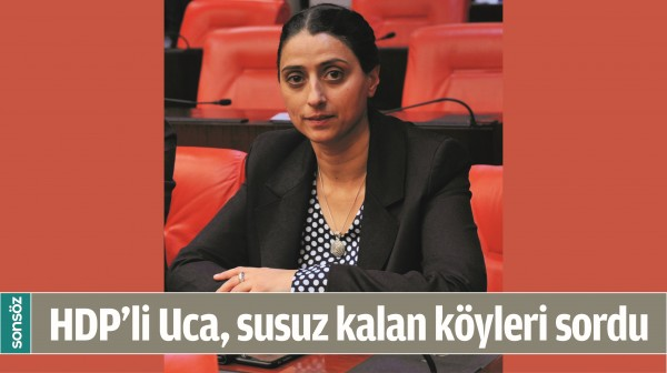 HDP'Lİ UCA, SUSUZ KALAN KÖYLERİ SORDU