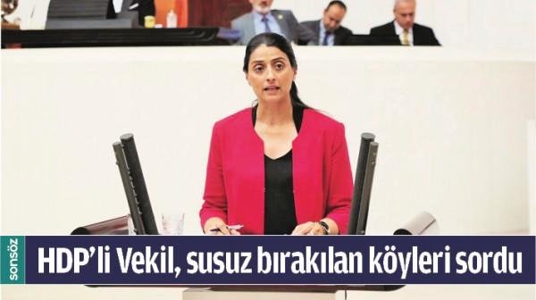 HDP'Lİ VEKİL, SUSUZ BIRAKILAN KÖYLERİ SORDU