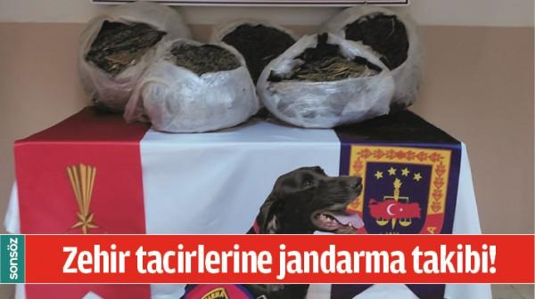 ZEHİR TACİRLERİNE JANDARMA TAKİBİ!